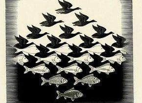 Exposição Experiência Escher acontece no Iguatemi Campinas