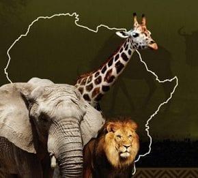 Savana africana invade o Parque D. Pedro Shopping nas férias de julho
