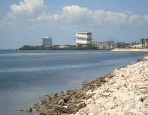Especial Turismo: Tampa - novas experiências nos EUA